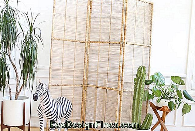 Wood screen with natural fiber