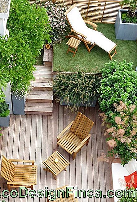 Wooden balcony with green area