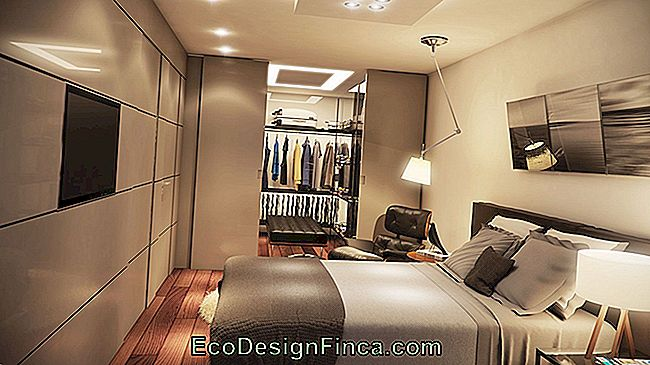 Bedroom With Dressing Room: Projects, Photos And Plans