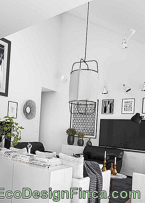 For the stylish room, a bold design lamp in black and white