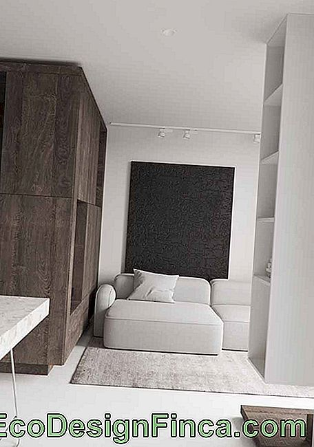 Room of neutral tones goes beyond black and white: here also has gray and brown