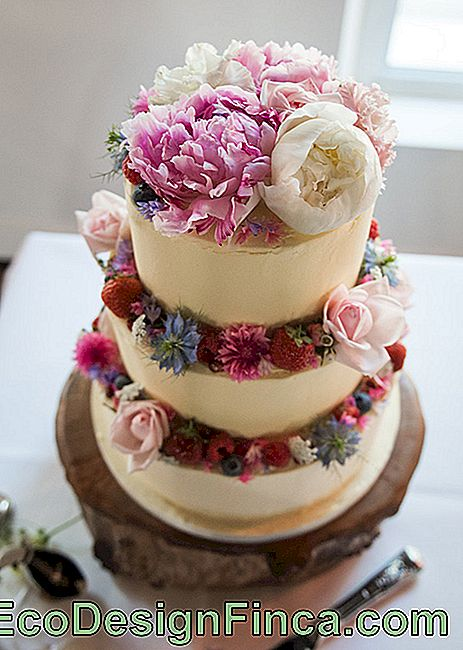 Wedding Cake: 45 Wonderful Ideas to Be Inspired: Picture