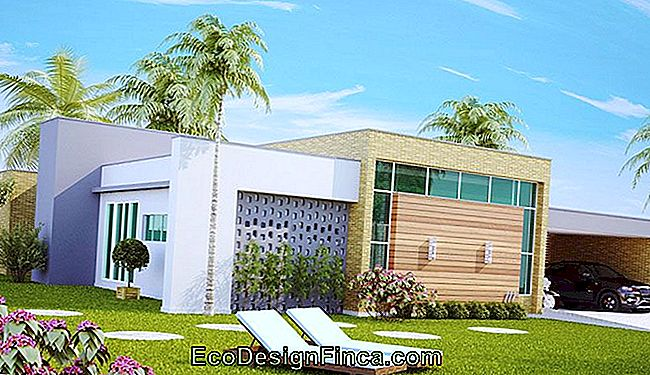3D design of large single storey house.