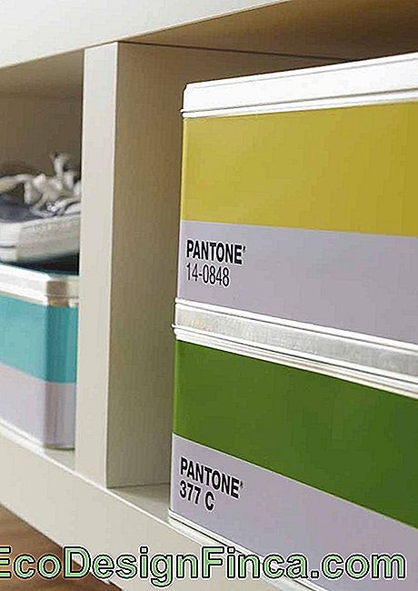 Organizer boxes decorated with Pantone tones