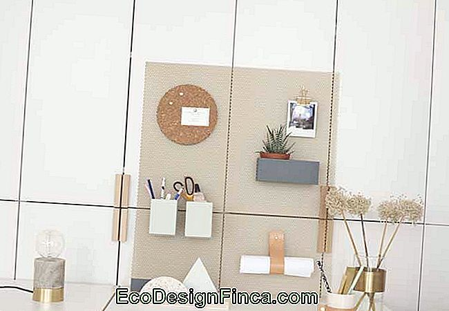 Organizer box: 60 environments organized and decorated with it: organizer