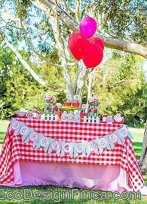 Picnic Party: 70 decorating ideas and theme pictures: decorating