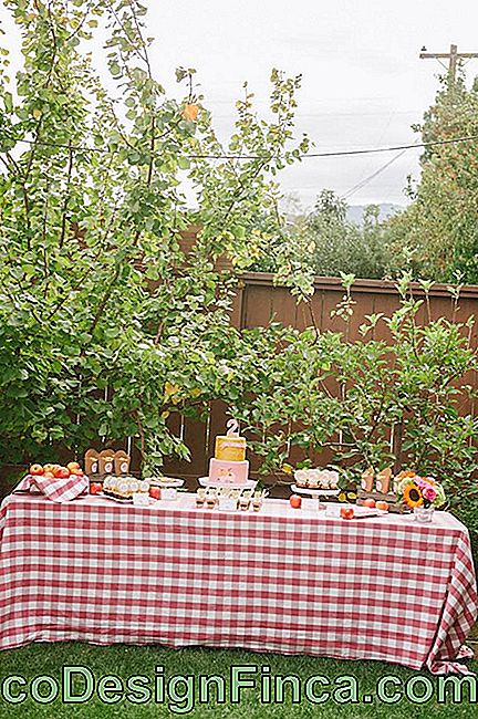 Picnic Party: 70 decorating ideas and theme pictures: picnic