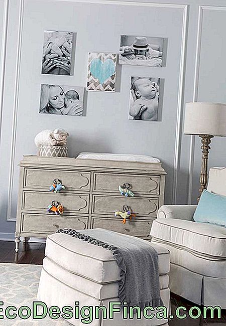 What a charm this chest of drawers with plush toy handles