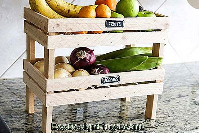 Fruitschaal met pallets