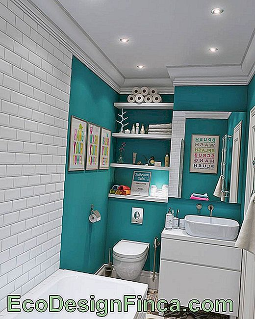 Turquoise Blue: 60 Color-Coded Ideas And Photos