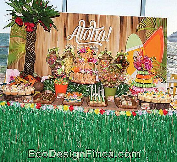 Hawaiian Party Decor: 70 Ideeën En Inspiraties