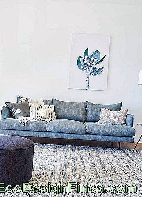 The most modern will fall in love with the proposal of a blue linen sofa; wonderful!