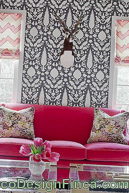 How about a pink velvet couch? Daring and irreverence in the room