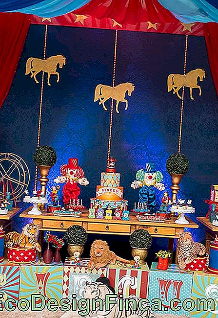 Do you want to have a circus luxury party? Look what a fantastic idea.