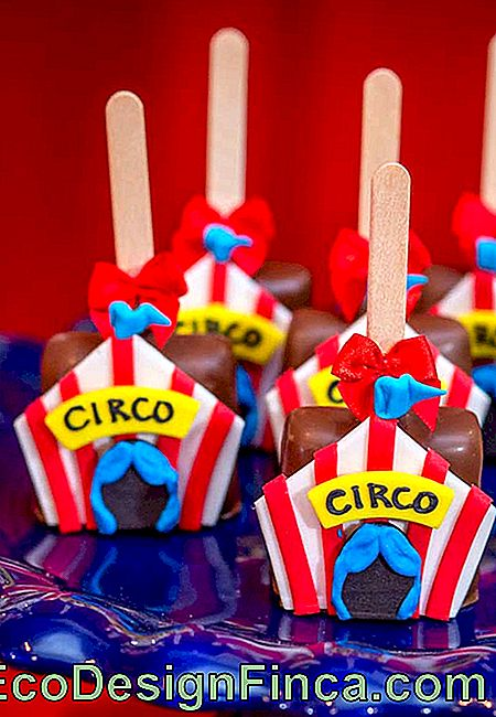 Customize all the candy from the circus theme party with items that are part of the theme universe.
