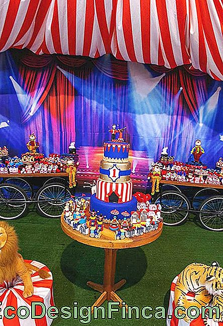 What a beautiful decoration with the circus theme with several elements that are part of the theme.