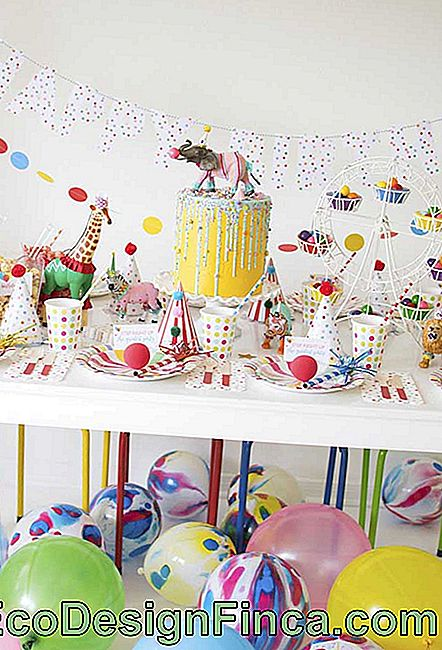 How about investing in a colorful party to celebrate your son's birthday?