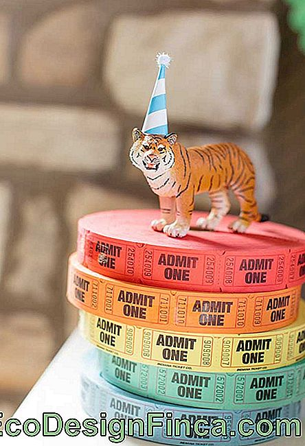 The circus ticket can be a great decorative element.