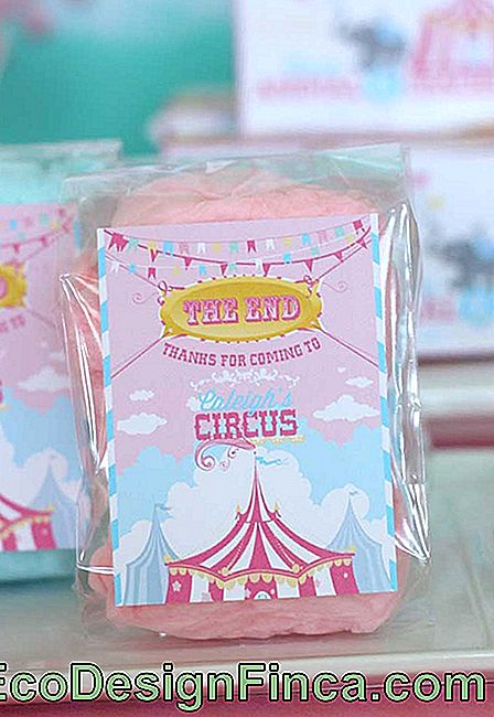 Look what a more feminine souvenir with the circus theme.