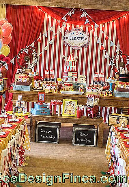 Various decorative elements are present in this circus children's party.