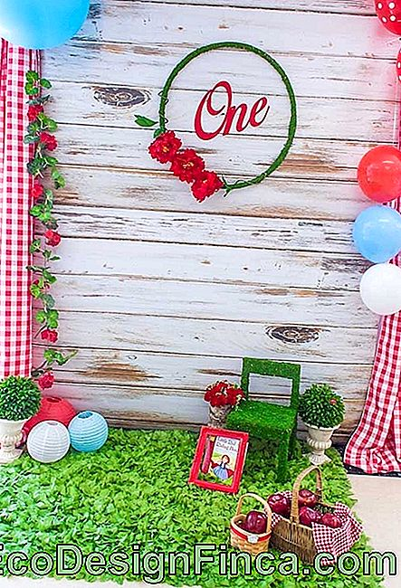 Red Riding Hood Party: 60 inspirerende decoraties met thema: hood