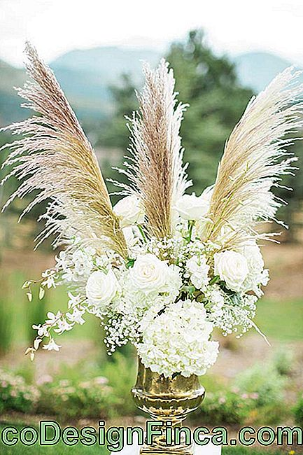 Flowers for wedding: the delicacy and simplicity of the gispsofila does not prevent the flower from composing more sophisticated arrangements