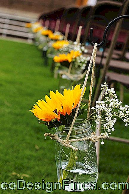 Flowers for marriage: sunflower and gispsofila lead up to the altar