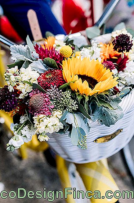 Sunflowers and chrysanthemums for wedding