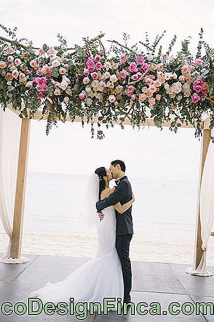 Flowers for wedding: lisianthus is a cheap and beautiful flower option for weddings