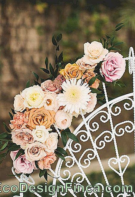 Outdoor wedding decoration with assorted flowers, among them daisy