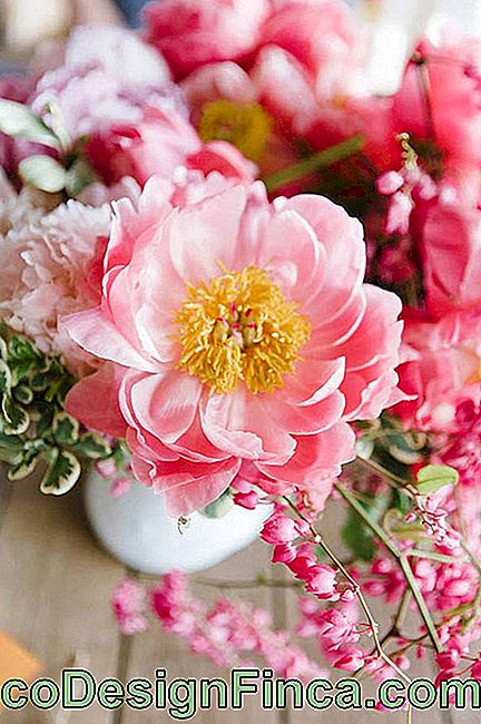 Wedding Flowers: Peonies can compose sophisticated or simple arrangements