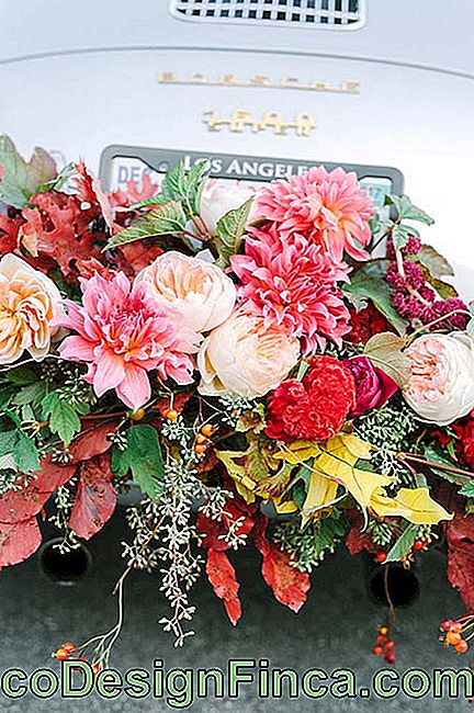 Wedding flowers of various types decorate the bride and groom's car