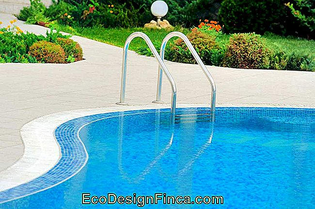 How To Clean Pool: Step By Step Tips And Periodicity