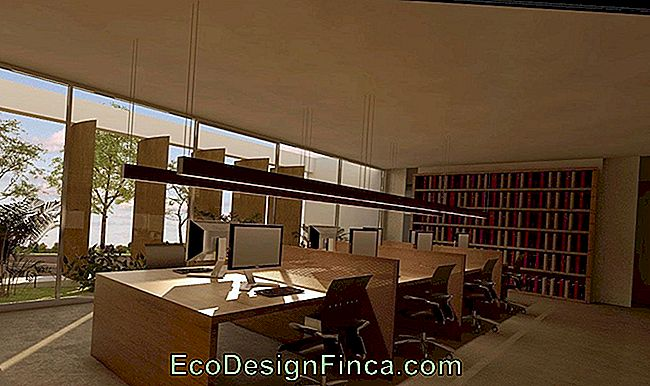 Law Office Decoration: 60 dessins et photos: office