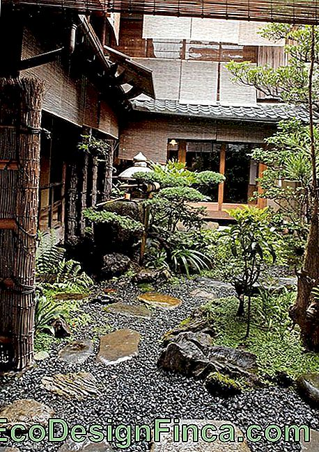 Japanese Garden: 60+ Photos To Create An Incredible Space!