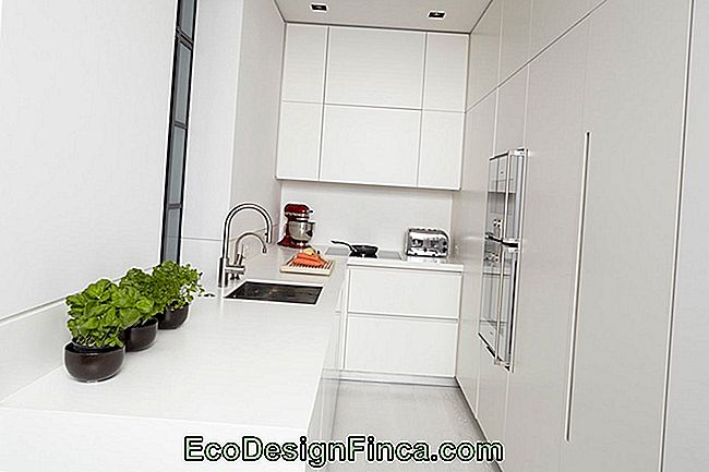 Clean Kitchen: 60 Amazing Designs And Designs