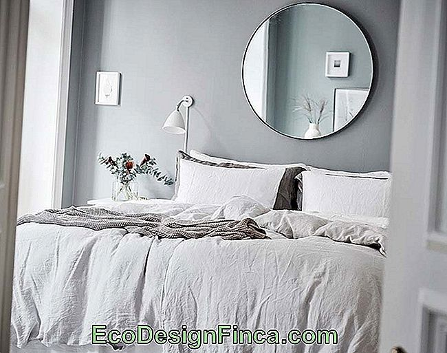 Mirror For Room: 75 Ideas And How To Choose The Ideal