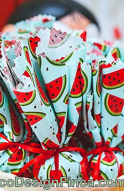 Magali Birthday Party Watermelon Sachets