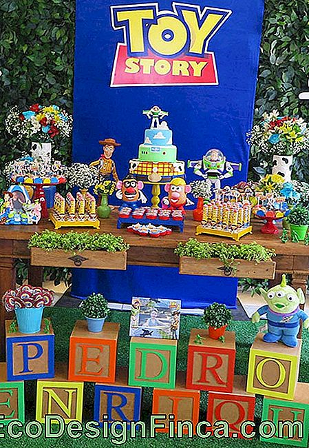 Toy Story Party Dekoration