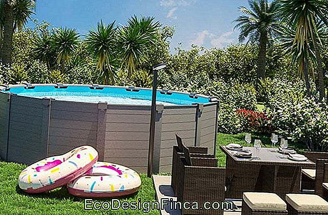 Pallet Pool: Creative Ideas And How To Make Your