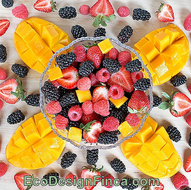 table fruit-21