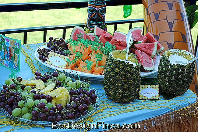 table fruit-6