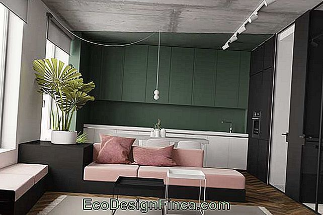 Green Wall: Different Shades Of Color To Use In The Decoration