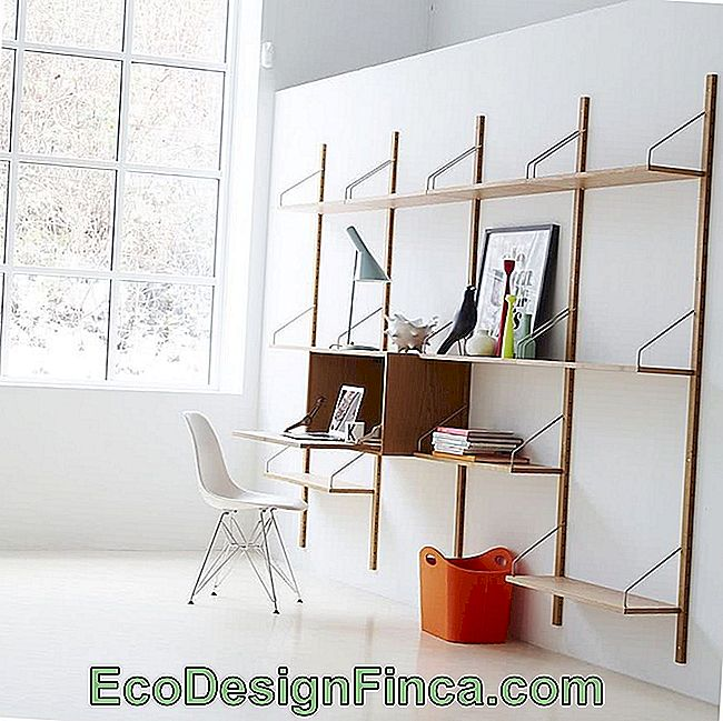 Creative Shelves: 60 Modern and Inspiring Solutions: creative
