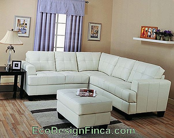 Small Room Sofa - 62 Perfect Models For Small Environments!