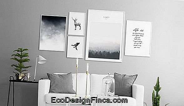 Black Wall In Decor: 50 Billeder Og Tips
