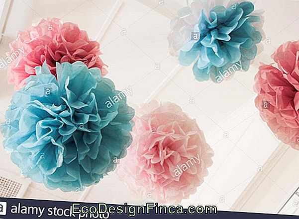 Flower Pompoms I Silkepapir