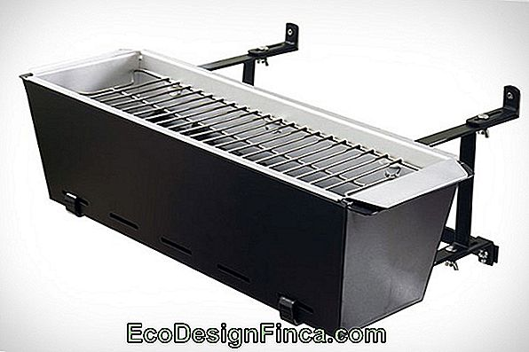 Charcoal Barbecue Modeller