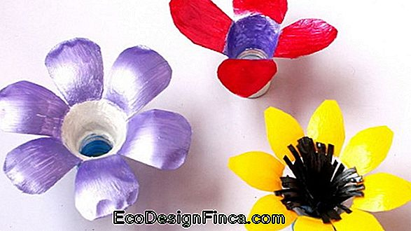 Pet Bottle Crafts: 76 Tolle Ideen Und Tutorials!