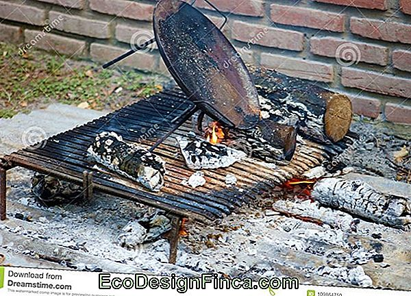 Barbecue Grill Und Grill: Traditionell
